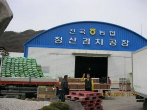 Happy employees at Chungsan Kimchi unload local cabbage